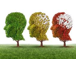 Dementia and new research initiatives