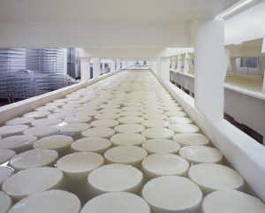 Vegetarian Diets; Cheese has a large carbon dioxide equivalent