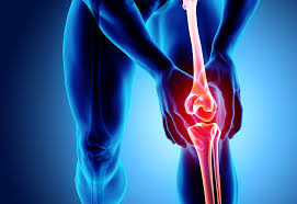 Osteoarthritis: Two Key Causes