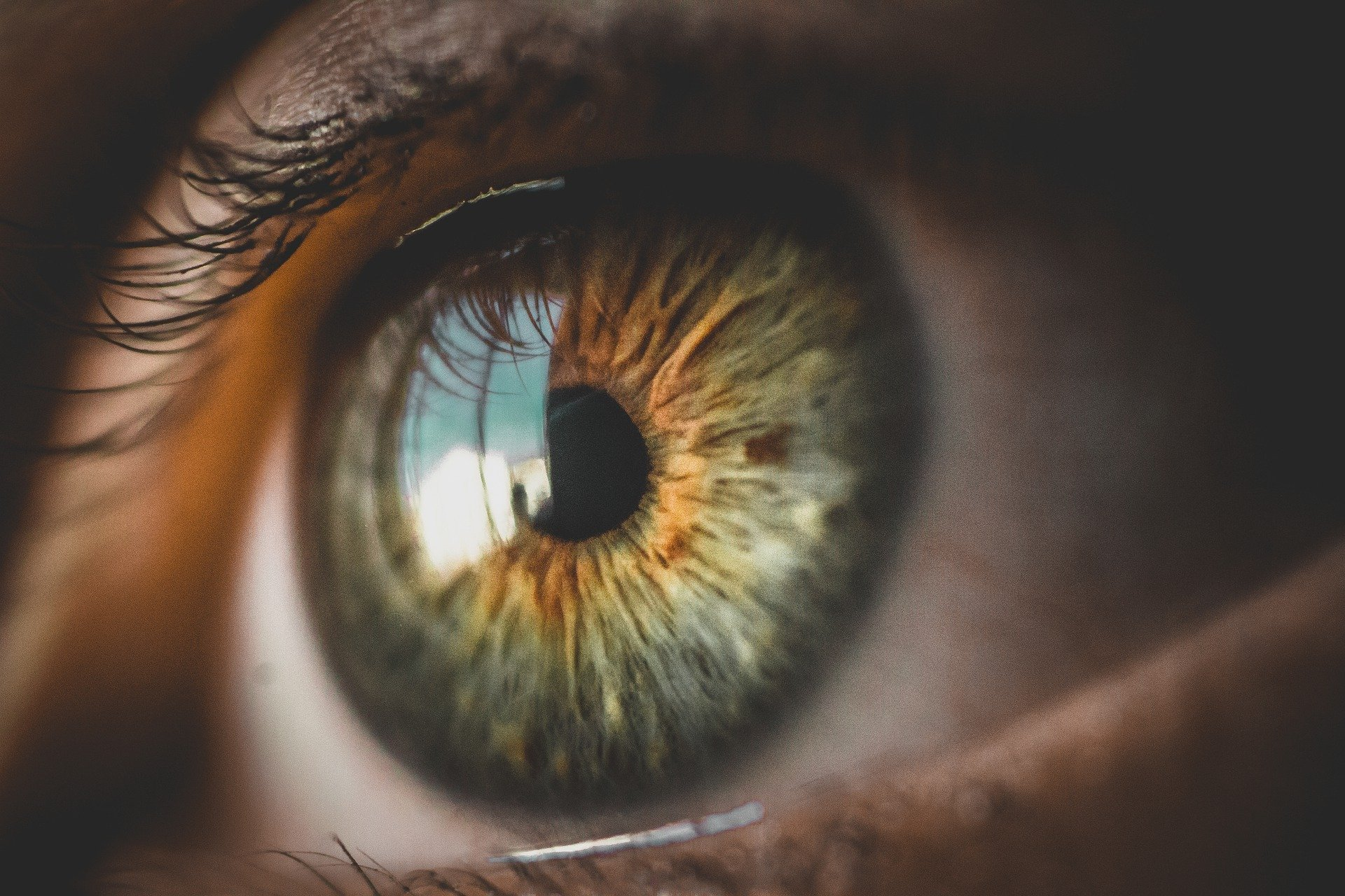 Restoring Human Eyesight using Genes from Algae. Also the Alarming increase in Mucormycosis (or 'Black Fungus') in India